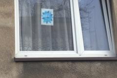niebieski_kwiatek