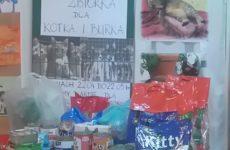 Zbiórka żywności dla schroniska dla zwierząt.