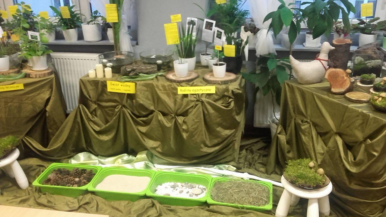 Ogród sensoryczny w SP 33 w Chorzowie.