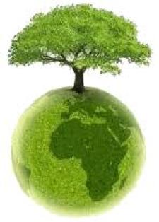 klipart_drzewo