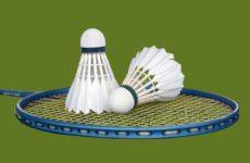 Więcej o: Regionalny Turniej Badmintona