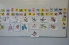 owady, nasze rysunki