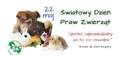 dzień praw zwierząt